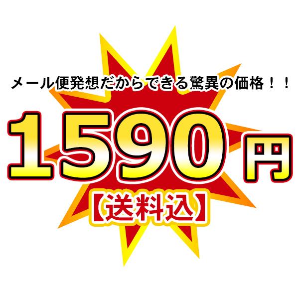 メール便発送だからできる驚異の価格!!1,300円【送料無料】