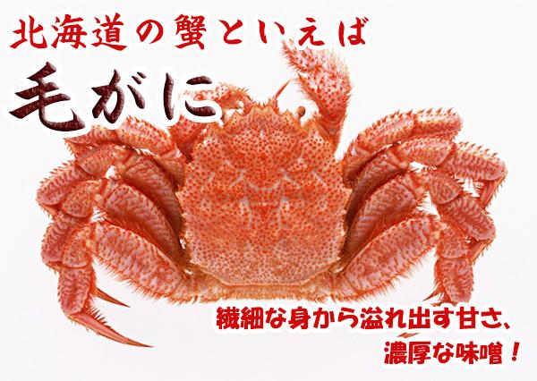 北海道の蟹といえば 毛がに 繊細な身から溢れ出す甘さ、濃厚な味噌!