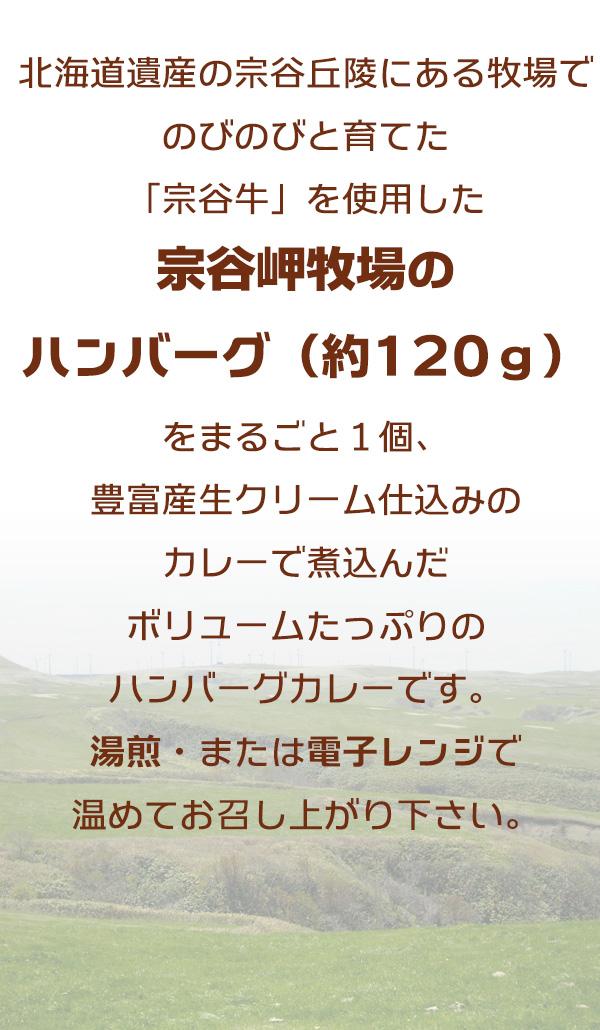 北海道遺産の宗谷丘陵にある牧場でのびのびと育てた「宗谷牛」を使用した「宗谷岬牧場のハンバーグ(約120g)」をまるごと1個、豊富産生クリーム仕込みのカレーで煮込んだボリュームたっぷりのハンバーグカレーです。  湯煎・または電子レンジで温めてお召し上がり下さい。